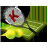 Покрытия для большого тенниса